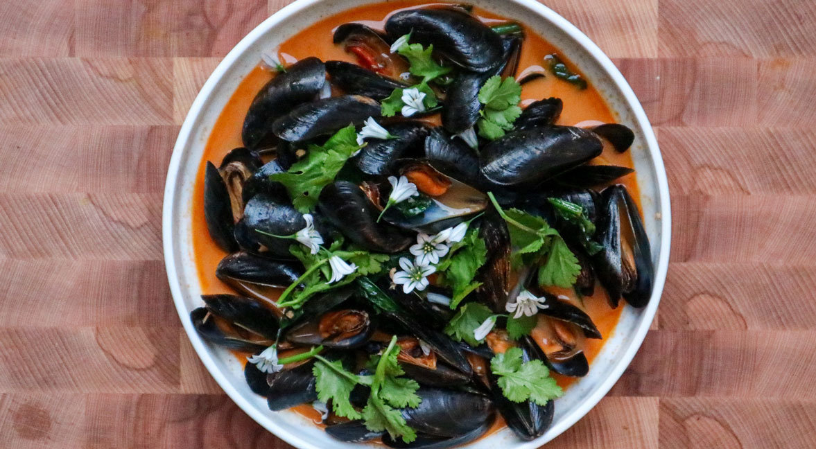 Gojuchang Mussels with Cider, Cream and Wild Garlic